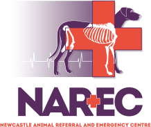 Newcastle animal referral and emergency centre logo